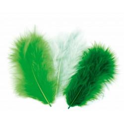 50 plumes d'oiseaux camaïeu de vert