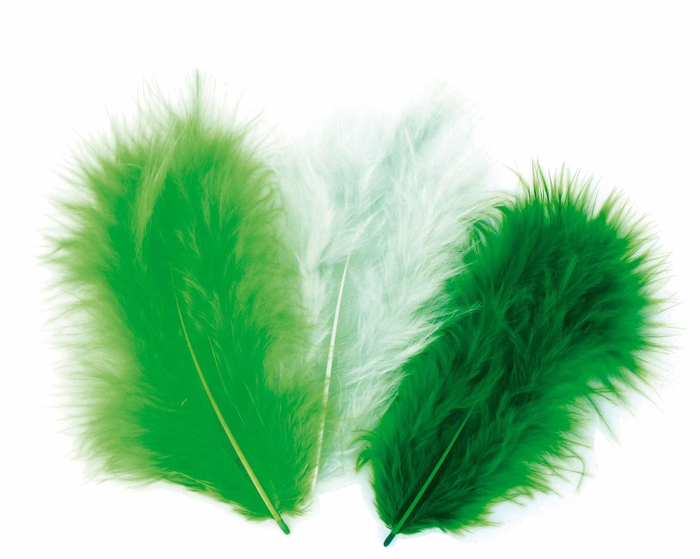 50 plumes d 39 oiseaux cama eu de vert aylia - Signification des plumes d oiseaux ...