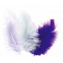 50 plumes d'oiseaux camaïeu de gris-mauve