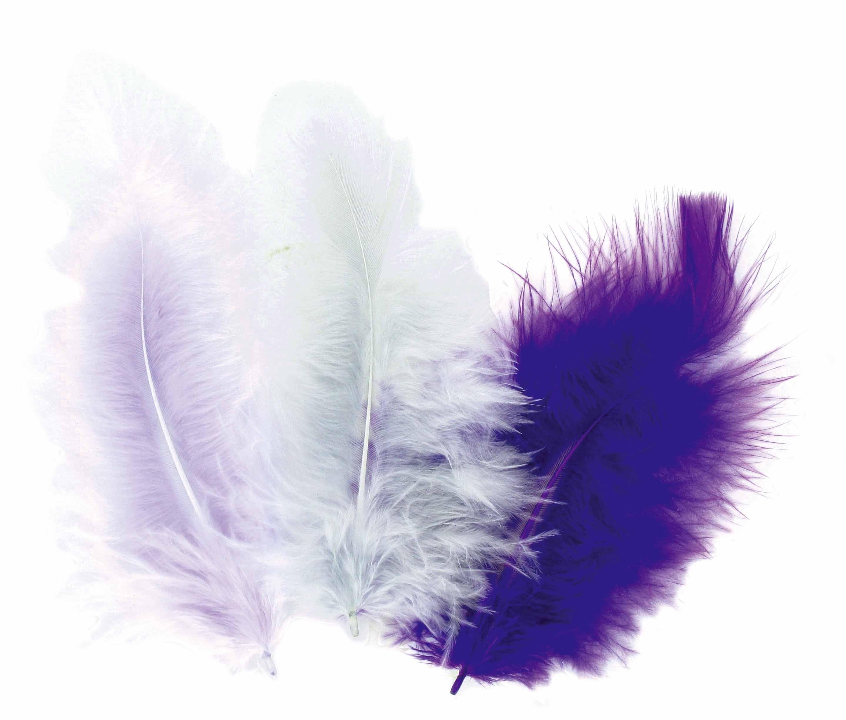 50 plumes d 39 oiseaux cama eu de gris mauve aylia - Signification des plumes d oiseaux ...