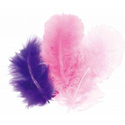 50 plumes d'oiseaux camaïeu de violet
