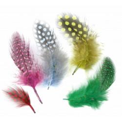50 plumes d'oiseaux assortisement multicolore