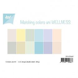 "Set de 12 feuilles recto verso A4 ""tendance pastel"" de Joy!Crafts"