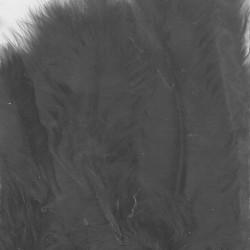 Plumes de Marabou Noir(15 pcs)