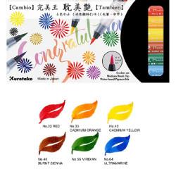Set de 6 feutres Brush pen...