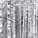 "Bloc de 6 feuilles photo recto verso 30x30 cm ""photos hiver"" d'Artemio"