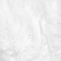 Plumes de Marabou blanc (15 pcs)