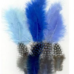 Plumes de Marabou et guinea bleu (18 pcs)