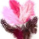 Plumes de Marabou et guinea rose(18 pcs)